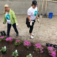 Volunteering planting flowers