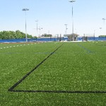 Outdoor Turf Fields vertical view