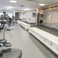 lower cardio area