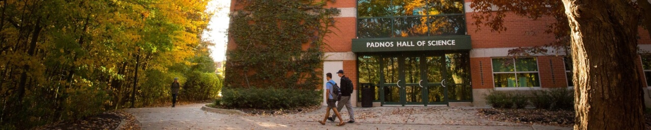 Padnos in Fall