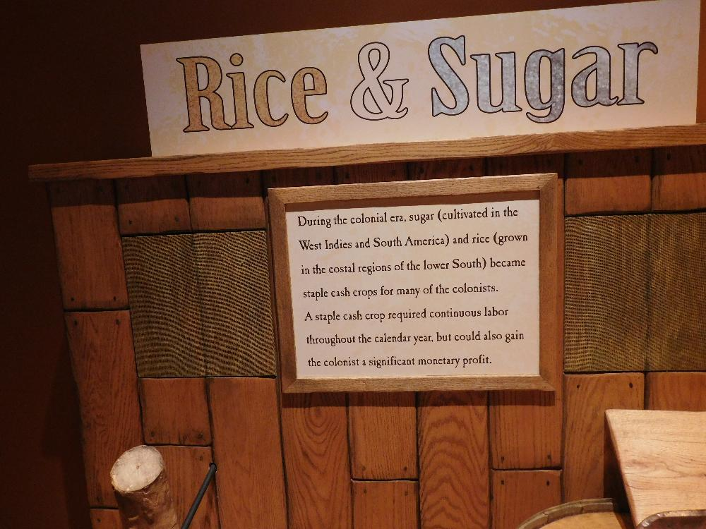 Rice and Sugar