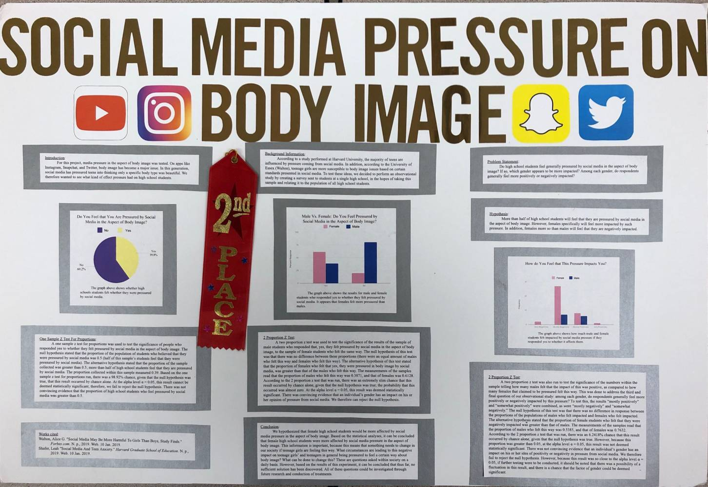 "Example Poster: ""Social Media Pressure on Body Image"""