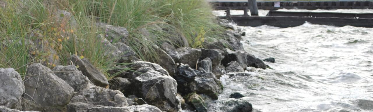 a shoreline with dunegrass and rocks