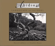 Abiding landscape of the soul book cover