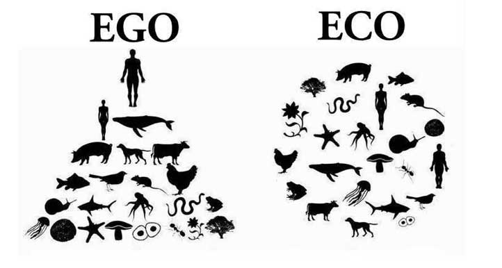 Ego vs. Eco Diagram