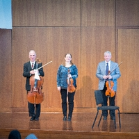 Grand Valley Faculty String Trio