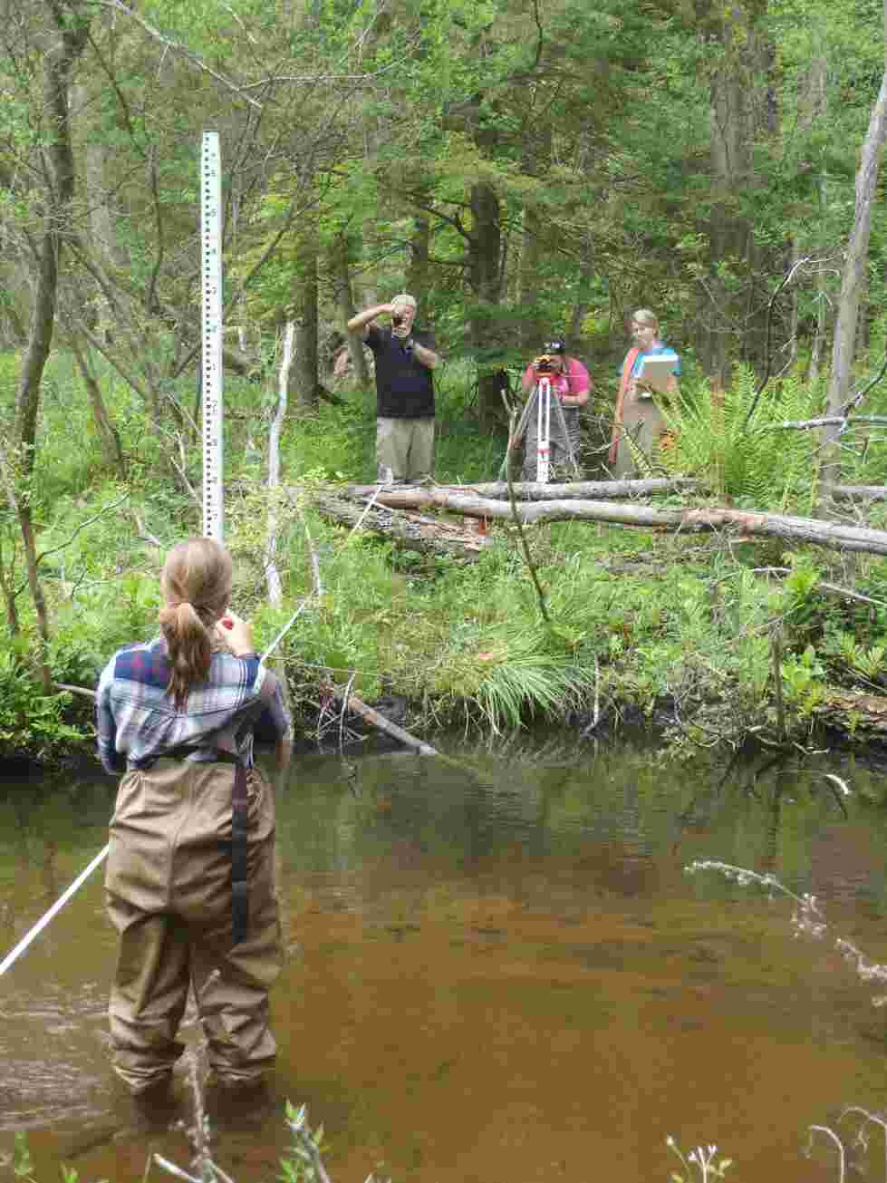 Stream transects were established and surveyed throughout the Duck Creek watershed.
