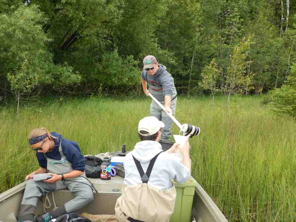 Alan, Evan, and Kaitlyn collect water samples and measure water quality parameters in a coastal wetland
