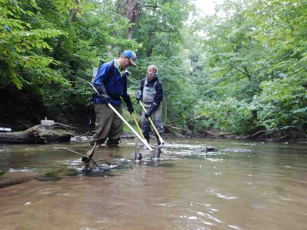 Dr. Ruetz and Kaitlyn sample fish in Sand Creek