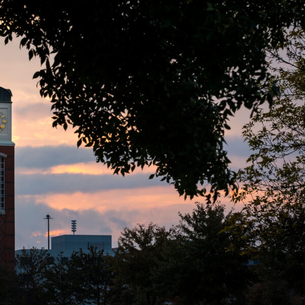 A photo of the Cook Carillon Tower.