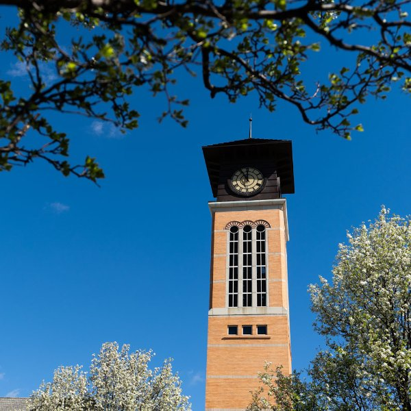 Beckering Family Carillon Tower framed by blossoming trees