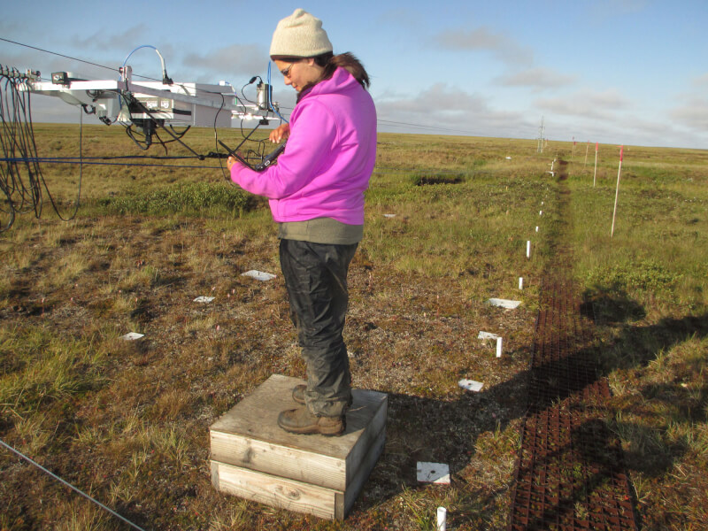 Alumna Michaela Clingaman downloading sensor observations in Atqasuk, Alaska.