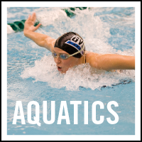 Aquatics button 2