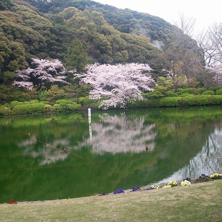 Image 1 of 2 Japan