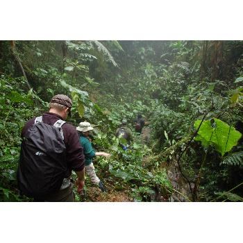 Ecuador: Ecology & Conservation Biology Photo