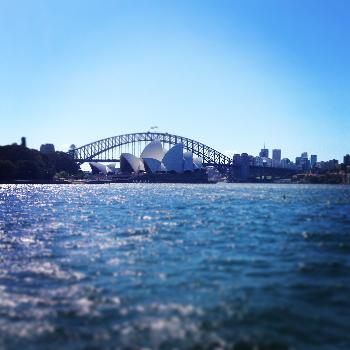 Australia: Sydney - ISA Internship Photo